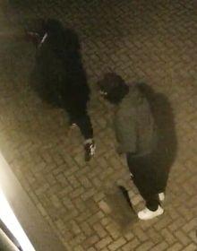 Politie zoekt inbrekers