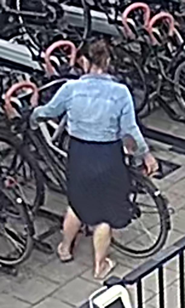 Politie zoekt fietsendief