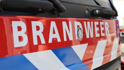Hilvarenbeek - Verdachte in beeld na brandstichting bij Safaripark