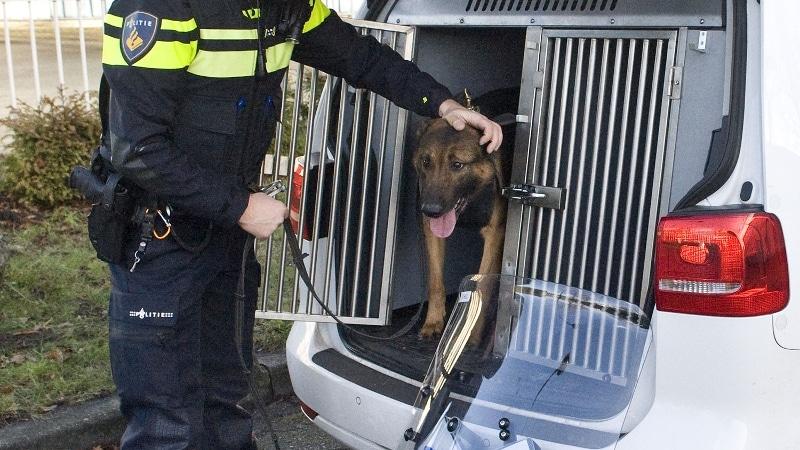Agent laat diensthond uit politieauto